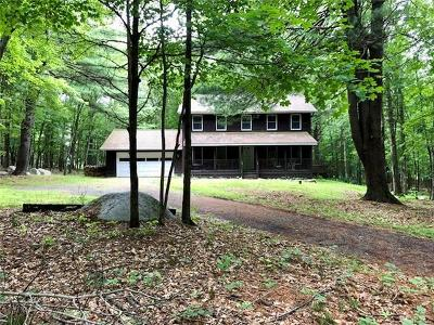 New Paltz Single Family Home For Sale: 21 Tall Pines Road