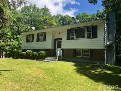 Dutchess County Single Family Home For Sale: 658 Willow Brook Road