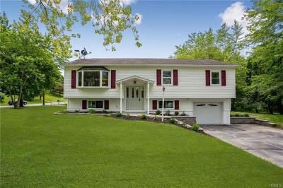 Dutchess County Single Family Home For Sale: 1 Craig Place