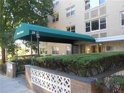 Westchester County Rental For Rent: 30 Lake Street #4F