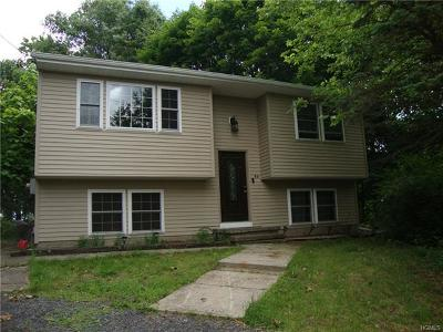 Dutchess County, Orange County, Sullivan County, Ulster County Rental For Rent: 60 Walker Street