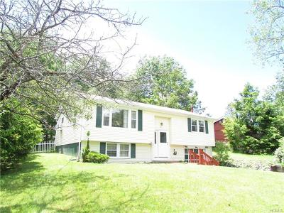 Rock Hill NY Single Family Home For Sale: $145,000