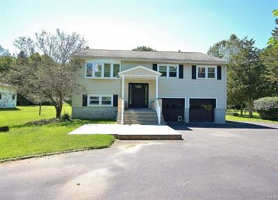 Washingtonville Single Family Home For Sale: 9 Perry Creek Road