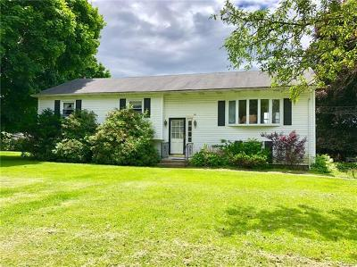 Dutchess County, Orange County, Sullivan County, Ulster County Single Family Home For Sale: 50 Harth Drive