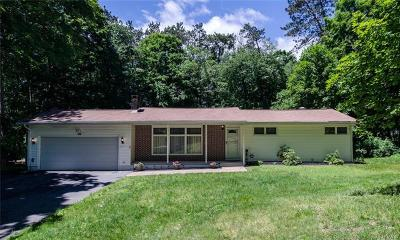 Dutchess County Single Family Home For Sale: 145 Roosevelt Road