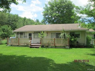 Ellenville Single Family Home For Sale: 66 Sherman Road