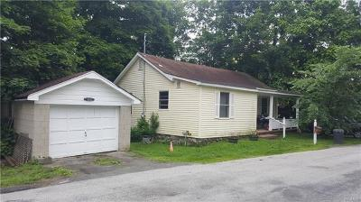 Dutchess County, Orange County, Sullivan County, Ulster County Rental For Rent: 2 Conklin Court