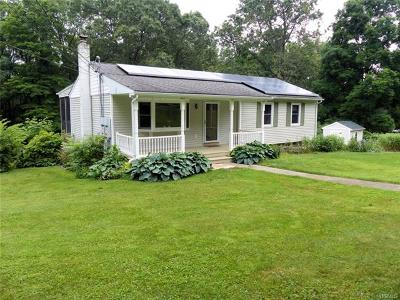 Dutchess County Single Family Home For Sale: 28 Vandewater Drive