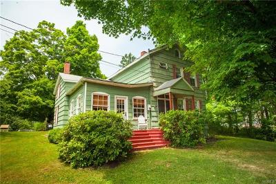 Orange County Single Family Home For Sale: 35 Route 209