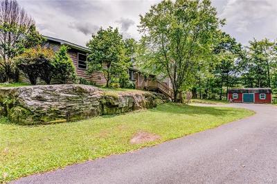 Wurtsboro Single Family Home For Sale: 1001 Wurtsboro Mountain Road