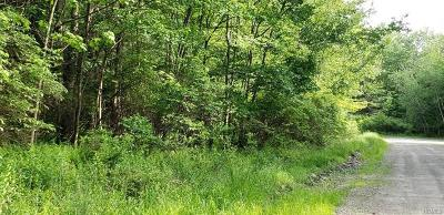 Dutchess County, Orange County, Sullivan County, Ulster County Residential Lots & Land For Sale: Marx Street