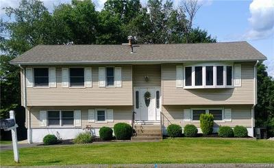 Rockland County Single Family Home For Sale: 24 Gilmore Drive