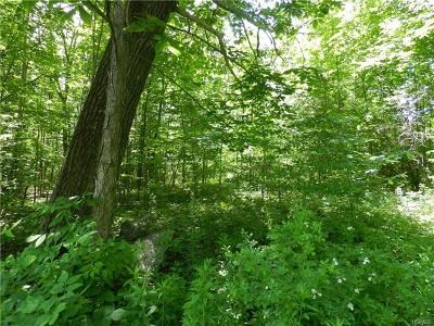 Dutchess County, Orange County, Sullivan County, Ulster County Residential Lots & Land For Sale: Irish Cape Road