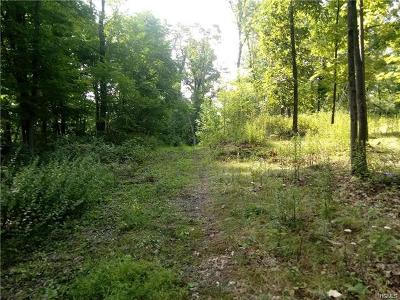 Red Hook Residential Lots & Land For Sale: 519 Budds Corners Road