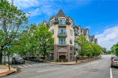 Westchester County Condo/Townhouse For Sale: 55 1st Street #305
