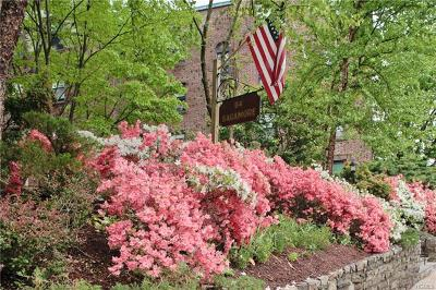 Westchester County Rental For Rent: 64 Sagamore Road #J7
