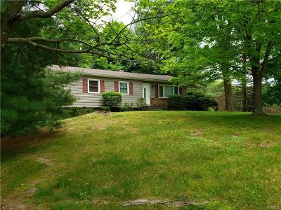 Dutchess County Single Family Home For Sale: 117 Vicki Lane