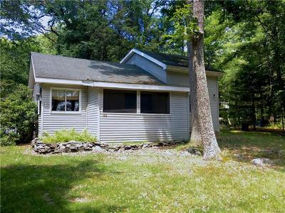 Sullivan County Single Family Home For Sale: 103 Minisink Trail