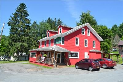 Sullivan County Commercial For Sale: 553 County Route 94