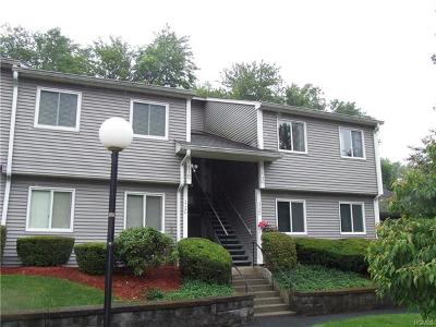 Westchester County Condo/Townhouse For Sale: 173 Long Hill Drive #G
