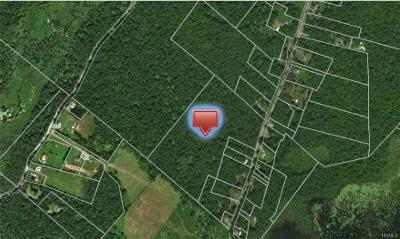 Forestburgh Residential Lots & Land For Sale: Sackett Lake Road