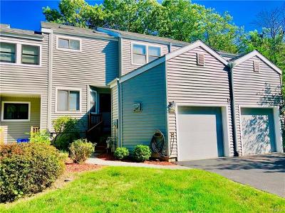 Ossining Condo/Townhouse For Sale: 125 Hunter