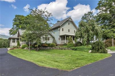 Orange County, Sullivan County, Ulster County Single Family Home For Sale: 352 South Mountain Road