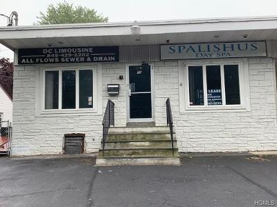 Stony Point Commercial For Sale: 42 Filors Lane