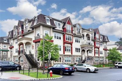 Rockland County Condo/Townhouse For Sale: 8 Elm Street #212