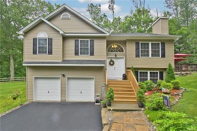 Middletown Single Family Home For Sale: 35 Carboy Road