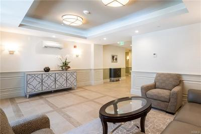 Eastchester Rental For Rent: 40 Jackson Avenue #1B