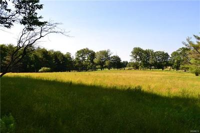 Dutchess County, Orange County, Sullivan County, Ulster County Residential Lots & Land For Sale: 97 Stewart Road