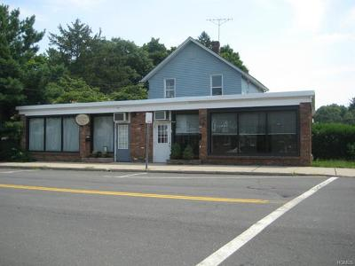 New City Commercial For Sale: 104 Maple Avenue