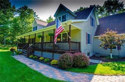 Dutchess County, Orange County, Sullivan County, Ulster County Single Family Home For Sale: 125 Francis Drive