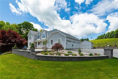 Dutchess County Single Family Home For Sale: 219 Pleasant Ridge Road