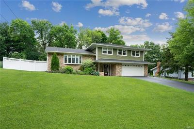 Dutchess County Single Family Home For Sale: 19 Hilltop Drive
