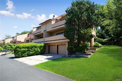 Suffern Single Family Home For Sale: 28 Dakota Court