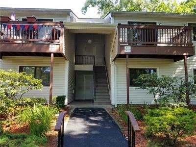 Westchester County Condo/Townhouse For Sale: 89 Molly Pitcher Lane #F
