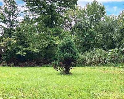 Residential Lots & Land For Sale: 210 Baileys Gap Road