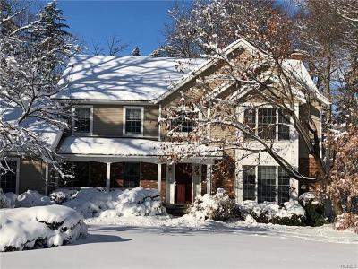 Goshen Single Family Home For Sale: 16 Brookside Drive