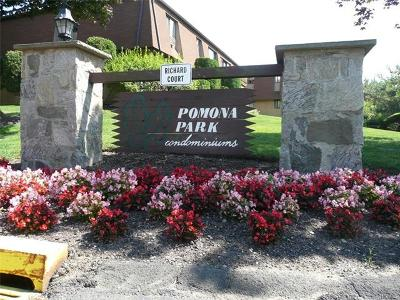 Pomona Condo/Townhouse For Sale: 182 Richard Court