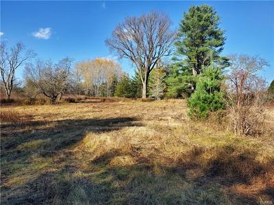 Bethel Residential Lots & Land For Sale: 1923 Nys Hwy 17b