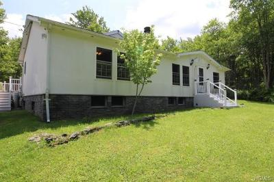 Dutchess County, Orange County, Sullivan County, Ulster County Single Family Home For Sale: 215 Dutch Hill Road