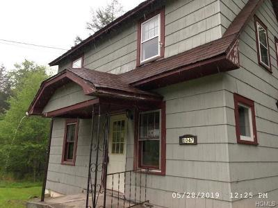 Livingston Manor NY Single Family Home For Sale: $54,900