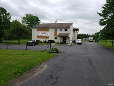 Middletown Commercial For Sale: 1138 Dolsontown Road