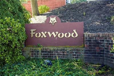 Westchester County Condo/Townhouse For Sale: 45 Foxwood Circle