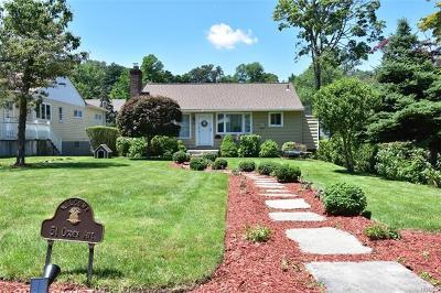 Dobbs Ferry Single Family Home For Sale: 51 Ogden Avenue
