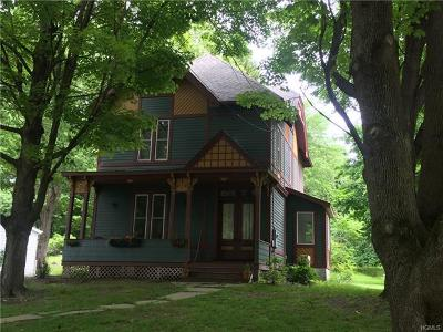 Columbia County Single Family Home For Sale: 49 Payn Avenue