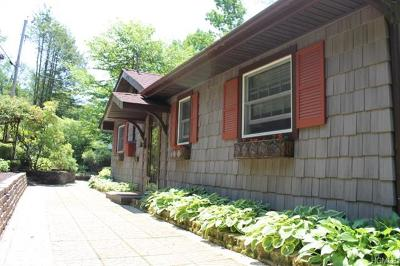 Sullivan County Single Family Home For Sale: 56 Overlook Road