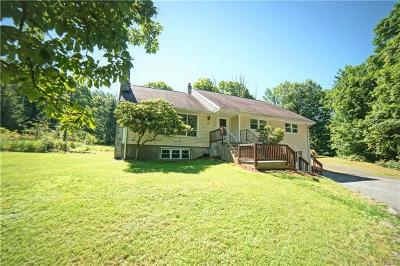 Central Valley Single Family Home For Sale: 19 Summer Hill Road